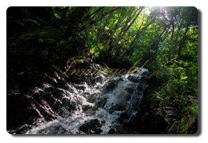 Abgelegener Wasserfall am Torente Cannobio efd059335b2b537abc0b33770ff4c5f1